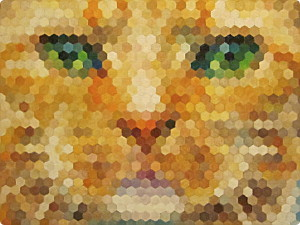 pixel (1)